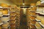 Почти 120 тонн сыра изготовили уссурийские сыровары в 2017 году