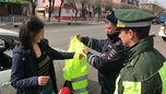 В Уссурийске сотрудники Госавтоинспекции провели профилактическую акцию «Засветись!»