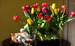 Анонс мероприятий на выходные дни 14-15 марта