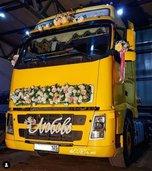 Покорил с первого взгляда: красавчик возле ЗАГСа привлекает приморских невест