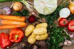В Уссурийске снижаются цены на сезонные овощи