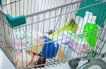 В Приморье снижаются цены на горбушу и другие продукты питания