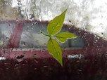 Серьёзное ухудшение погоды в Приморье ожидается 21 сентября