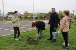 «Лес Победы» посадили около новой ледовой арены в Уссурийске