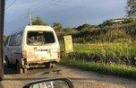 Странная история: «брошенка» на дороге привлекла внимание приморцев