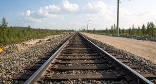 Хабаровчане поехали на море в грузовом поезде и попались полиции в Уссурийске