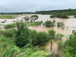 В Уссурийском городском округе остаются подтопленными более трех тысяч гектаров сельхозугодий
