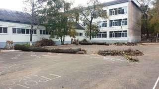 В Уссурийске благоустраивают территории школ и детских садов