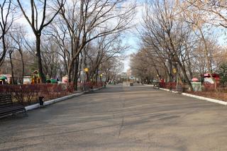 Городской парк Уссурийска ожидает реконструкция