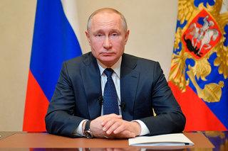 Владимира Путина пригласили на открытие свинокомплекса под Уссурийском