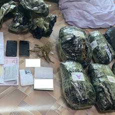 Упаковки женьшеня стоимостью 15 миллионов рублей обнаружили у постояльцев гостиницы в Уссурийске